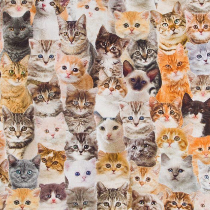 Digitale print katoen katten