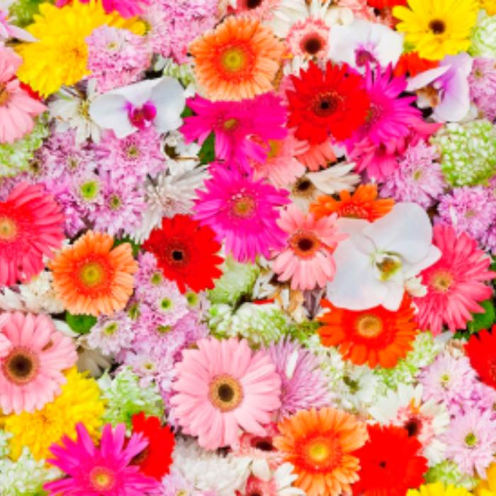 Gekleurde Bloemen Decoratie Stof Harry S Stoffen En Gordijnen