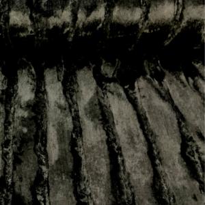 Imitatiebont stof zwart ribbel