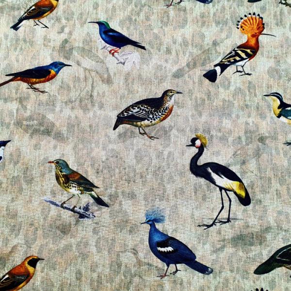 Decoratie stof vogel soorten