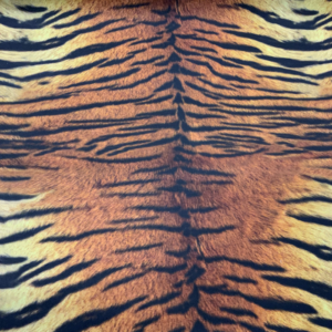 Decoratie stof tijger print